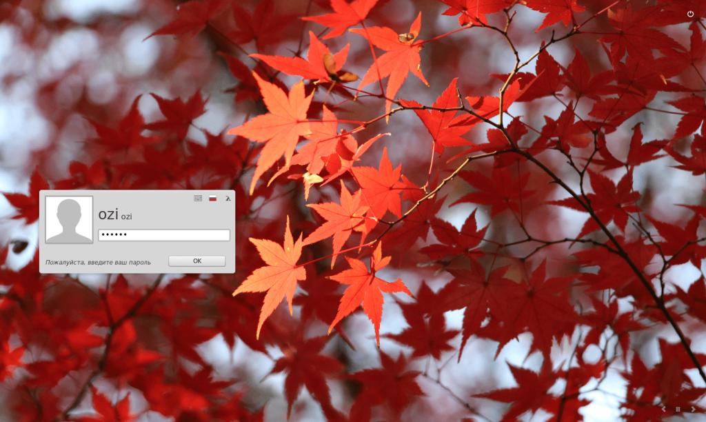 Вход пользователя в Linux Mint